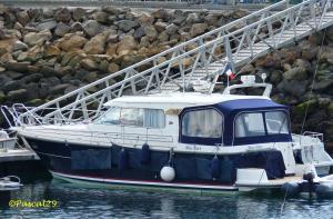 Photo of BLUE DART ship