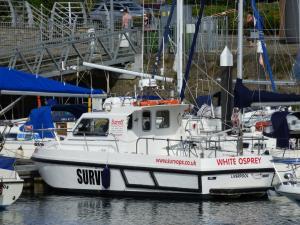 Photo of WHITE OSPREY ship