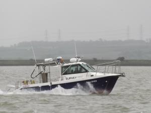 Photo of GALLOPER ship