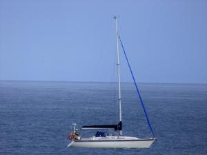 Photo of HOME RUN ship