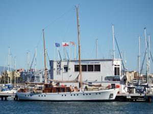 Photo of WILD VENTURE ship