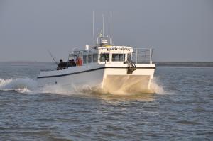 Photo of HARDLABOUR ship