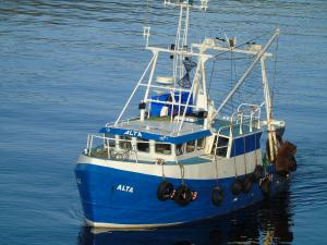 Photo of ALTA FR699 ship