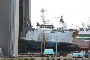 Photo of GOLDEN SCEPTRE PD50 ship