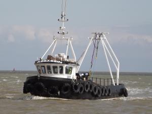 Photo of ASSASSIN ship
