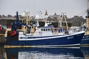 Photo of GV DAISY B245 ship