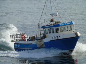 Photo of BOY HARRY FR37 ship