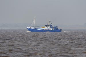 Photo of G.V.ADVENTURE ship