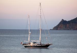 Photo of LAPITA ship