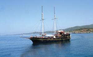 Photo of BLACK PEARL ship