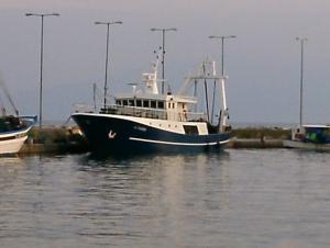 Photo of P.G. PSARROS ship
