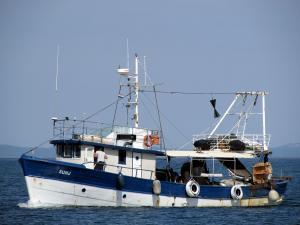 Photo of SUNJ ship