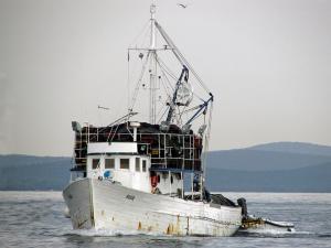 Photo of RUDA ship