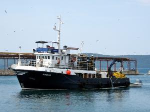 Photo of ELIZABETA TRI ship