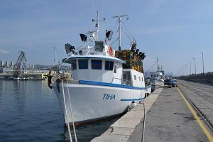 Photo of TIHA ship