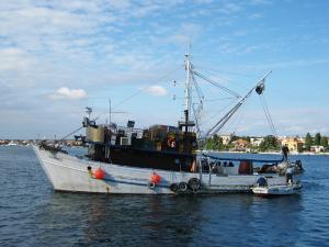 Photo of KVARNER ship