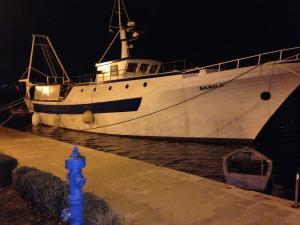 Photo of SKRILA ship
