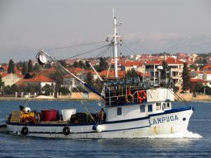 Photo of LAMPUGA ship