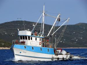 Photo of KOLEGA ship