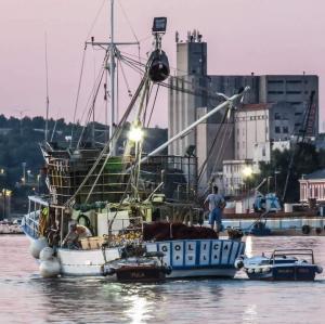 Photo of GOLICA ship
