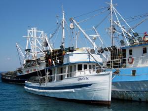 Photo of MORSKI PAS ship