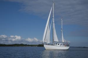 Photo of JONAS ship