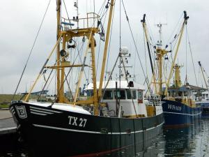 Photo of TX27 NOVA CURA ship