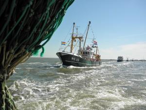 Photo of WR23DEVROUWGEERTRUID ship