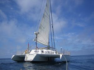Photo of TRIMAAT ship