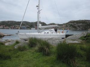 Photo of ANDREA ship