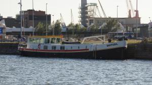 Photo of DAFFODIL ship