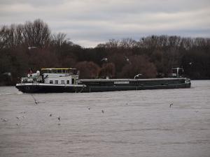 Photo of CAESAR ship