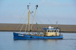 Photo of HA40 SIMONA ship