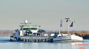 Photo of INSOMNIA ship
