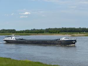 Photo of STRANGER ship