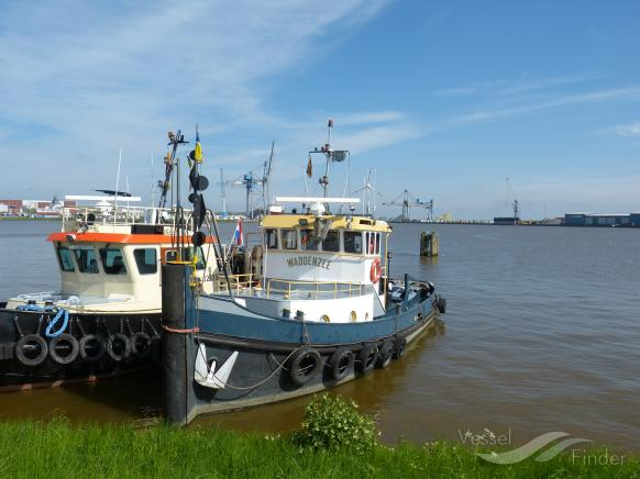 WADDENZEE photo