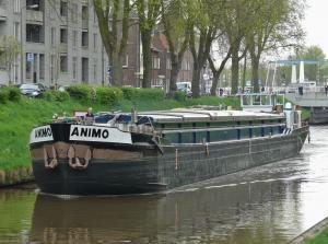 Photo of ANIMO ship