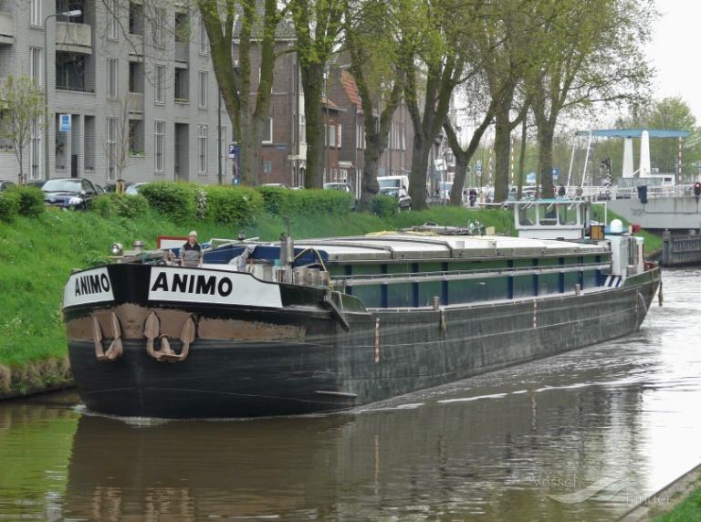 ANIMO photo