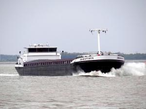 Photo of AMARANTHUS ship