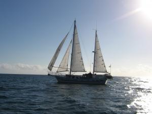 Photo of ELSEZ ship