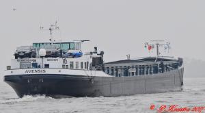 Photo of AVENSIS ship