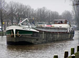 Photo of MOLLY ship