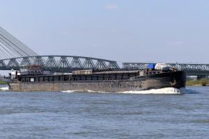 Photo of SINBAD ship