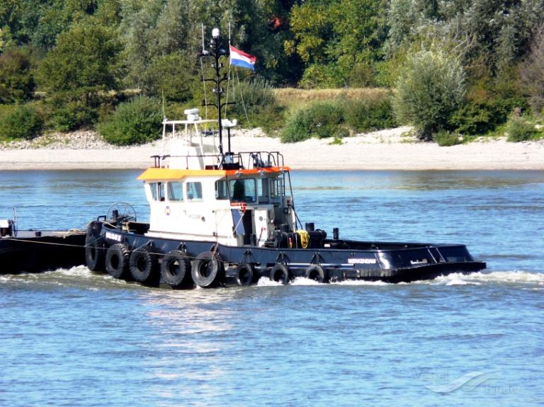 WALRUS II photo
