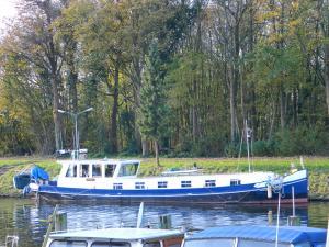 Photo of MASTODONT ship
