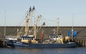 Photo of WR226 JACK CORNELIS ship