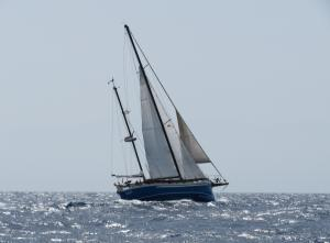 Photo of BOLLE ship