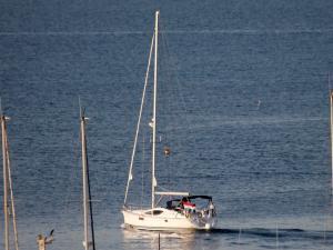 Photo of JOIE DE VIVRE ship