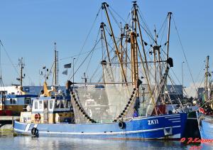 Photo of ZK11 HOOP OP ZEGEN ship