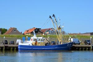 Photo of TX42 RES NOVA ship